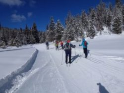 Cross-Country Ski Sun Valley Feb. 16 To 23, 2019