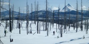 North Santiam Backcountry Ski